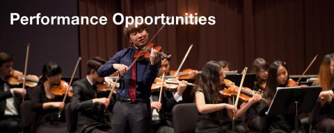Performance Opportunities